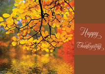 Autumn Reflection Thanksgiving Card