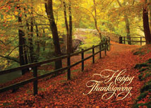 Leaf-Strewn Lane Thanksgiving Cards